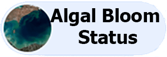 algal icon